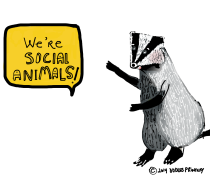 OOdles-Printery-Badgers-Gone-Social